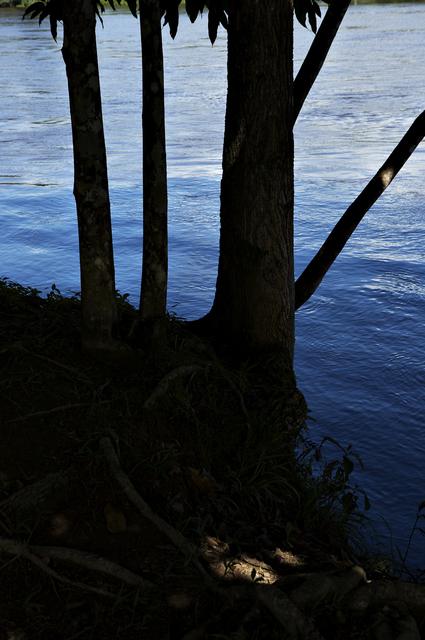 , 'River #1,' 2013, Casemore Kirkeby