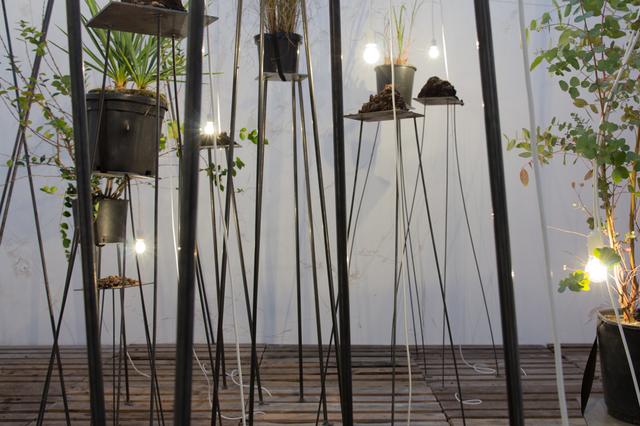 , 'Brutstätten und andere Schwärmereien,' 2017, Galerie Gisela Clement