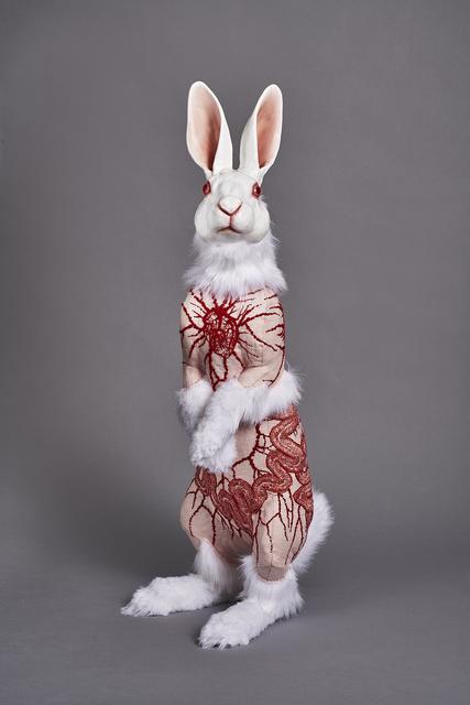 , 'Flayed Rabbit: Albino with Cells,' 2017, Bernice Steinbaum Gallery