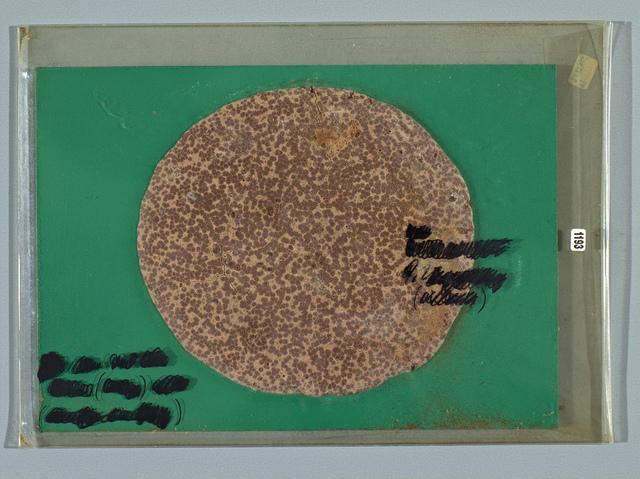 , 'Selbstportrait,' 1969, LEVY Galerie
