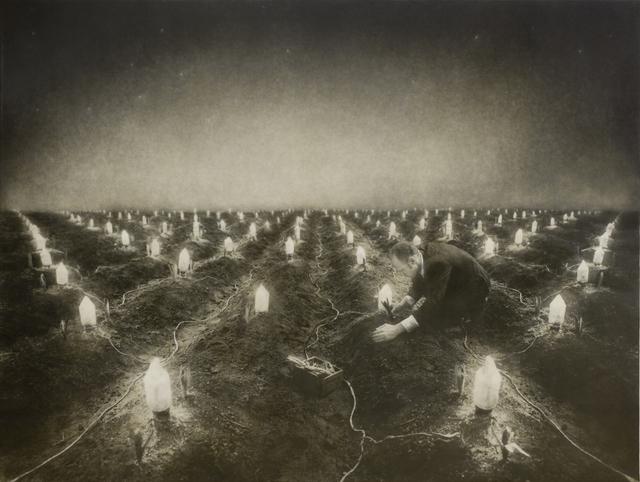 , 'Night Garden,' 2000, Slete Gallery