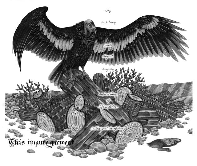 , 'California Condor,' 2014, Koplin Del Rio