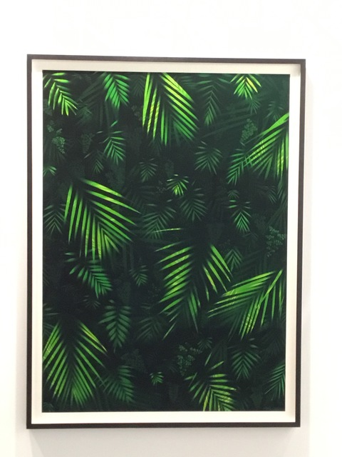 , 'Nocturnas,' 2018, Galeria Marilia Razuk