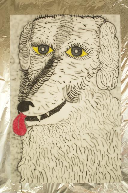 , 'Dog Selfie,' 2015, Pablo Cardoza Gallery