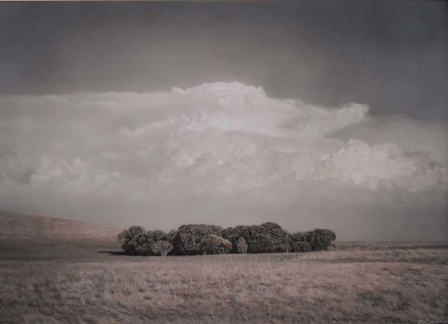 , 'Copse of Trees near The Coorong, South Australia     ,' , Etherton Gallery
