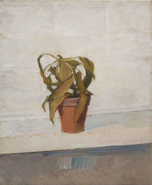 , 'Dead Plant,' 1976, Piano Nobile