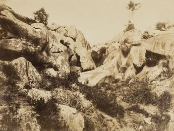 Sables de Macherin, Fontainebleau