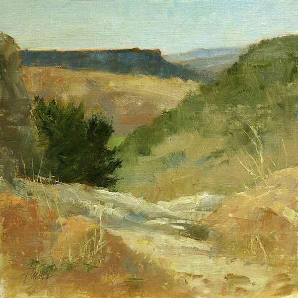 , 'Desert Tapestry,' , Sorrel Sky Gallery