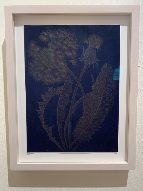 Margot Glass, 'Blue Dandelion', 2019, Drawing, Collage or other Work on Paper, 14 karat gold on prepared paper, Garvey | Simon