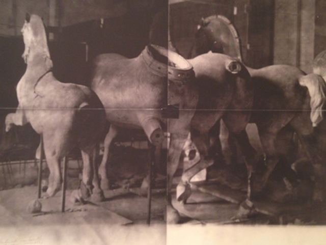 , 'Horse Statues, Unseen Versailles,,' 1981, Staley-Wise Gallery