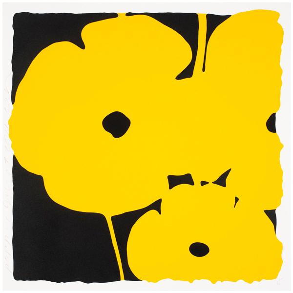 Big Poppies-Yellow