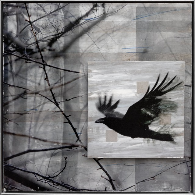 , 'Raven Sings of Trees,' , Zenith Gallery
