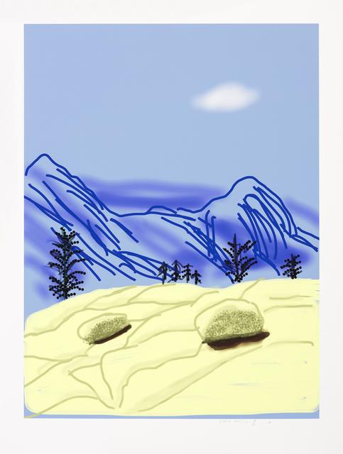 , 'Yosemite N°24,' 2010, Galerie Lelong & Co.