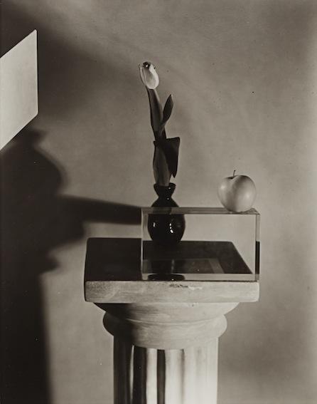 Untitled (1706), 1986, platinum-palladium contact print, 20.3 x 25.4 cm  © Jan Groover, Courtesy Janet Borden Inc., New York and KLEMM'S, Berlin