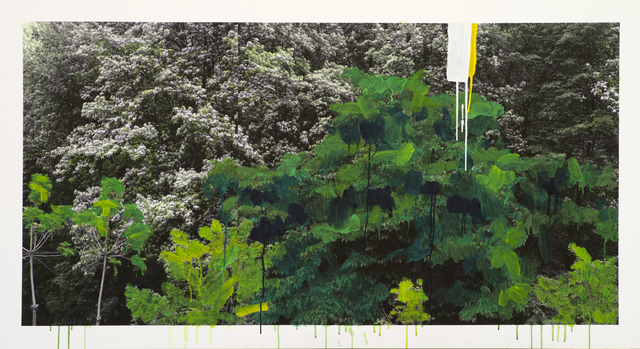 , 'Study of Green - White Flower,' 2012, ONE AND J. Gallery