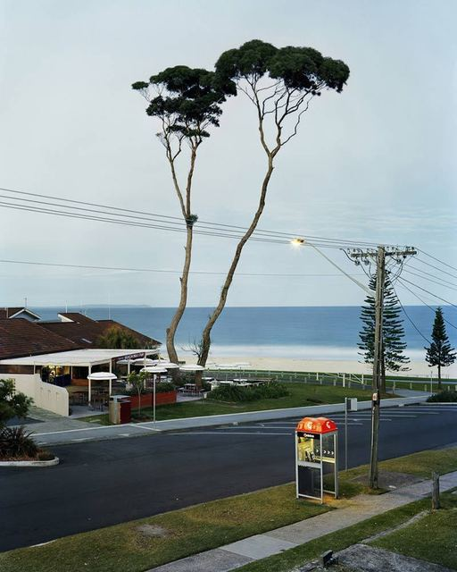Amy Stein and Stacy Arezou Mehrfar, 'Two Tall Trees, Mollymook', 2010, ClampArt