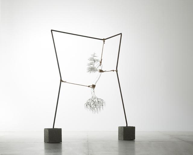 , 'Tensione estetica #4,' 2017, Galleria d'Arte Maggiore G.A.M.