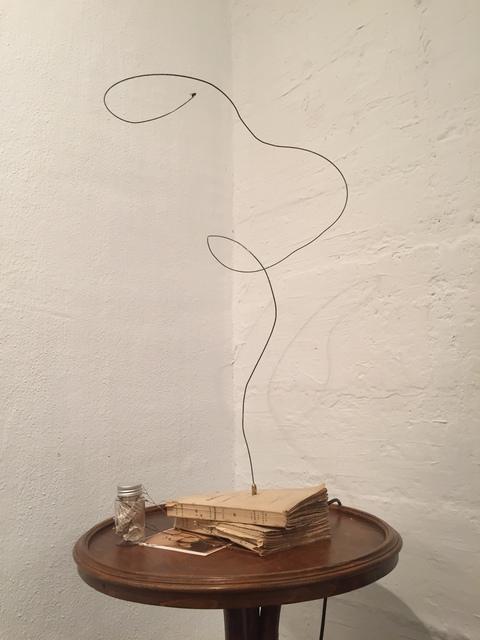 , 'Flugbahn einer Nervensäge,' 2015, Galerie SOON