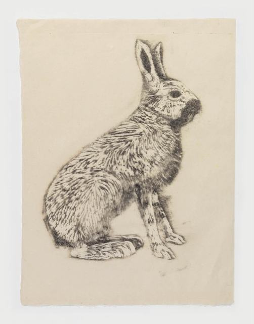 , 'Hare,' 2015, Stephen Friedman Gallery