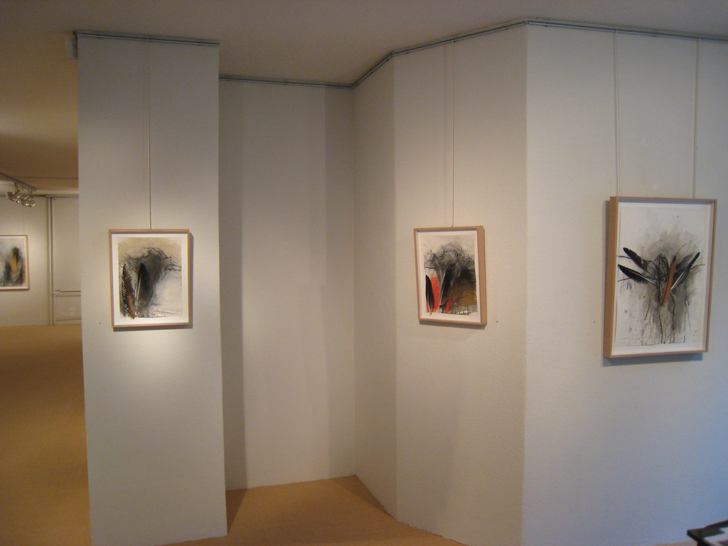view of the Rolf Iseli exhibition 2015