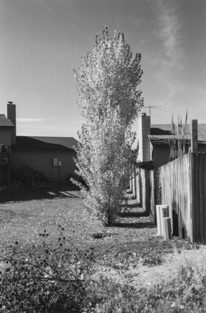 , 'Arvada, Colorado,' 1984-1987, San Francisco Museum of Modern Art (SFMOMA)