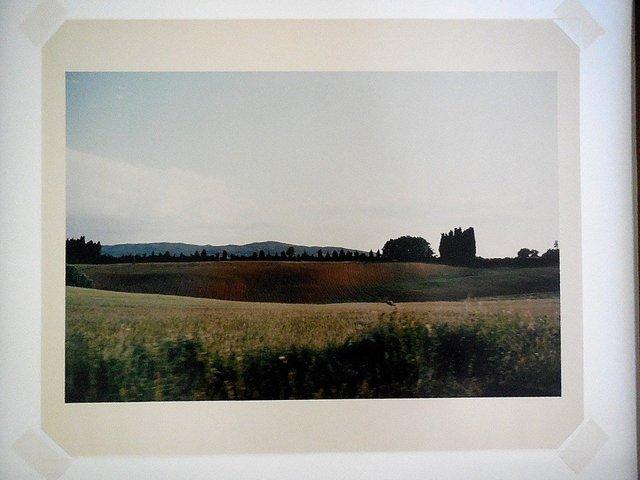 Joel Meyerowitz, 'Tuscany, Hillside, 1996', 1996, Lions Gallery