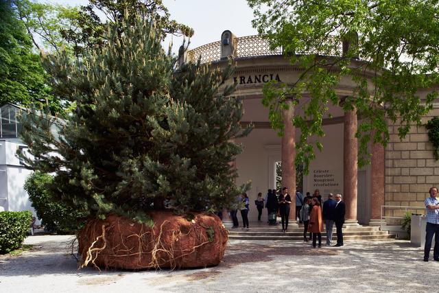 , 'transHumUs / projet  (Installation View),' 2015, 56th Venice Biennale