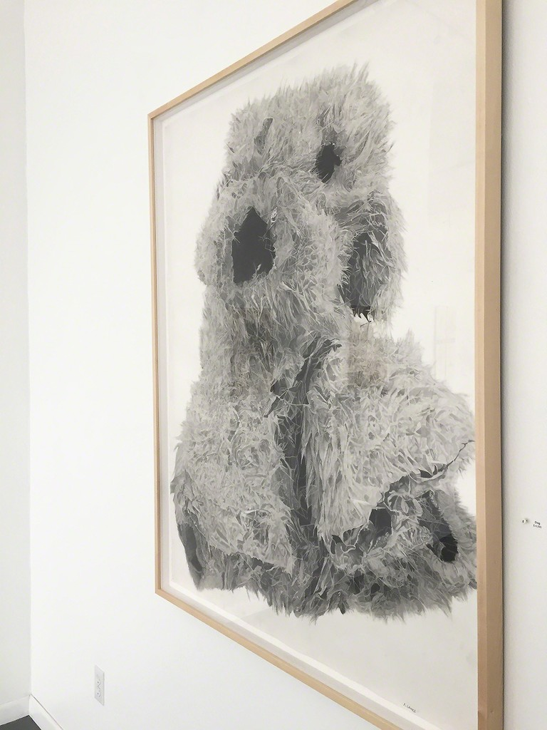"""Dog"" by Aida Gamez, 50"" x 39"" framed graphite pencil drawing"