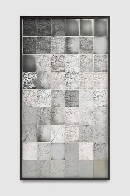 , 'Spider mites 2,' 2018, Martin Asbæk Gallery