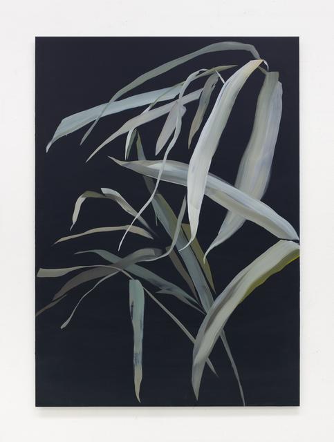 , 'Leaves,' 2019, Wetterling Gallery