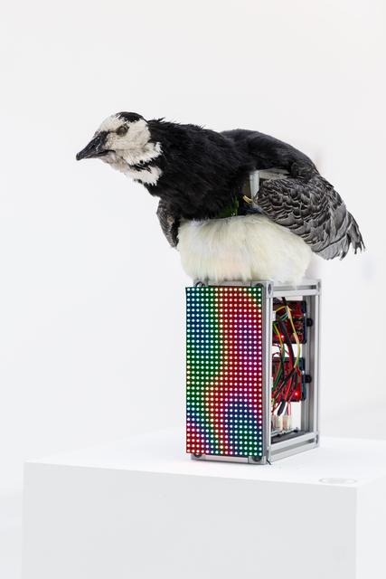 , 'Jacques de Vaucanson's Digesting Duck 1739,' 2018, HATCH ART PROJECT