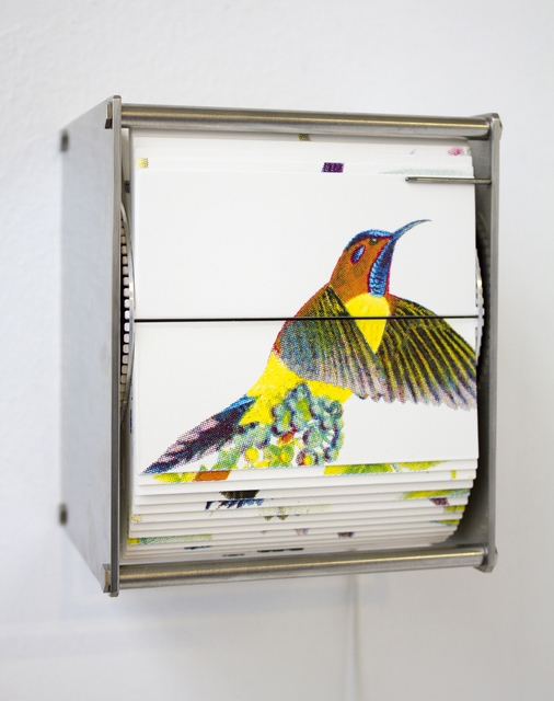 , 'Ornithology P,' 2014, Conduit Gallery