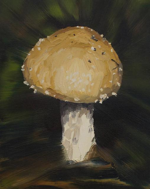 , 'Shroom,' 2015, Peter Robertson Gallery