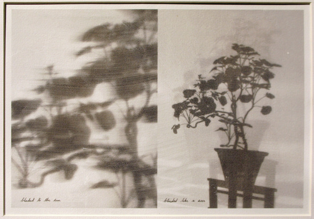 , 'like a seer,' 2007/2012, Project 88