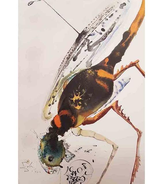 "Salvador Dalí, 'Lochusta et Bruchus - From ""Biblia Sacra""', 1964, Wallector"