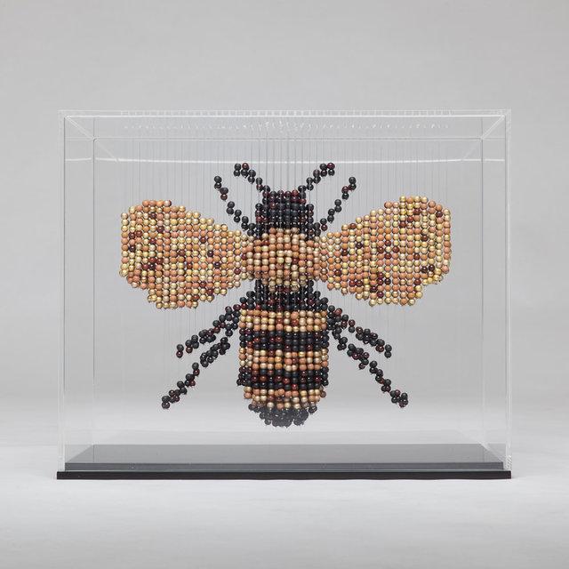 , 'Bee,' 2017, Galerie Montmartre