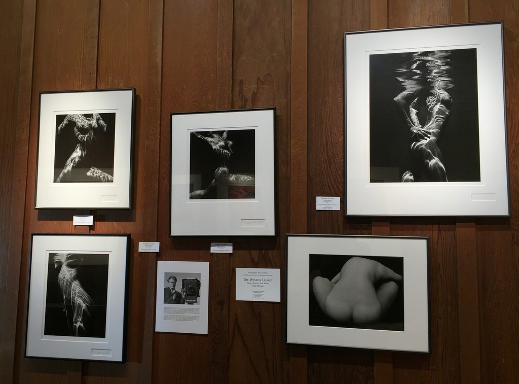 Nudes by Brett Weston