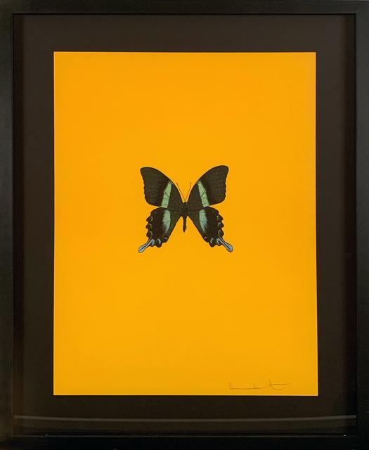 Damien Hirst, 'Six Butterflies III', 2011, DTR Modern Galleries