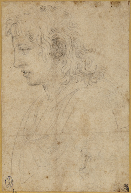 , 'Bust of Youth and Caricature Head of an Old Man in Left Profile,' ca. 1530, Princeton University Art Museum