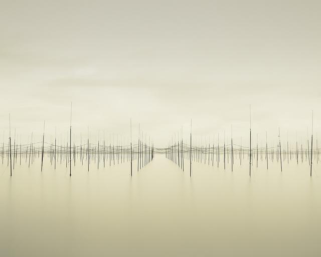 , 'Matrix Ariake Sea,' 2010, CYNTHIA-REEVES