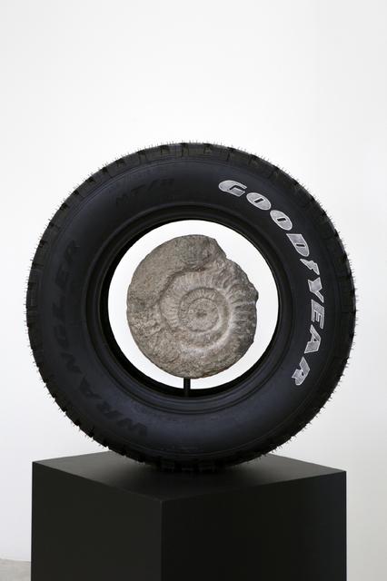 , 'Memento Mori (Ammonite),' 2016, MARSO