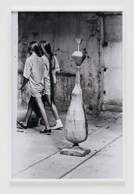, 'Xifópagas capilares,' 1987, Bergamin & Gomide
