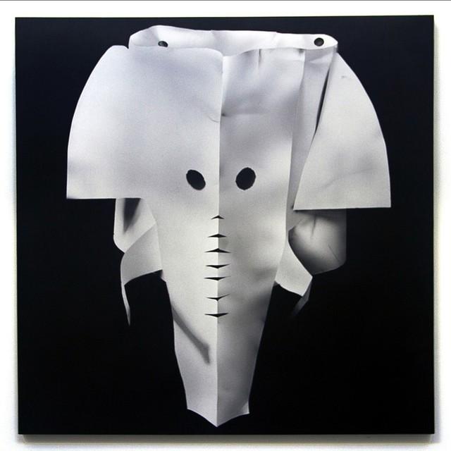 , 'Elephantasmagoria,' 2016, Mark Moore Fine Art