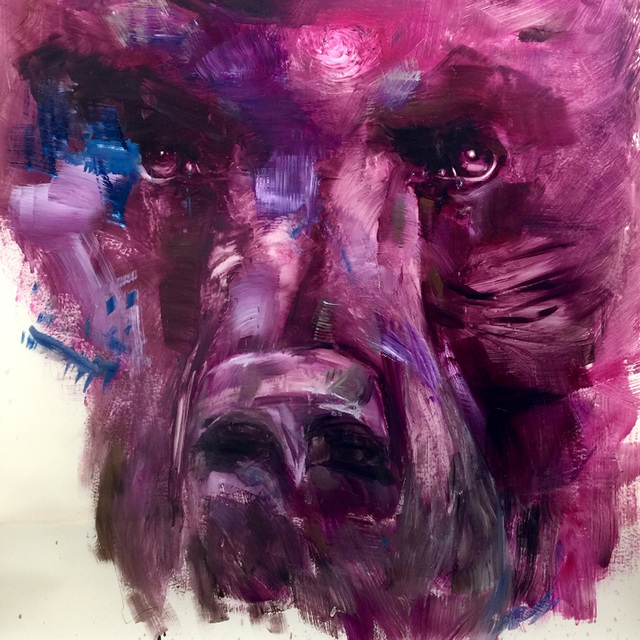 , 'Pink Bear,' 2017, Lamont Stewart Art Projects