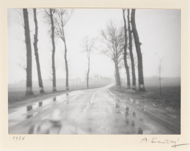 André Kertész, '[Belgian road]', 1928, Doyle