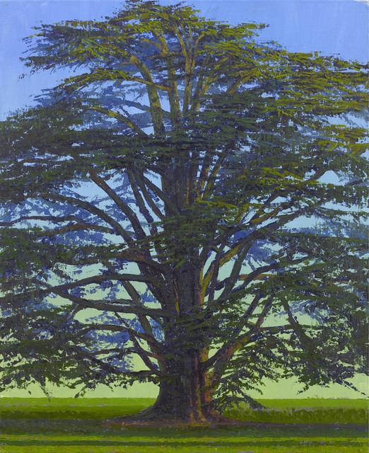, 'Cedar, Middleton Park,' 2017, John Martin Gallery