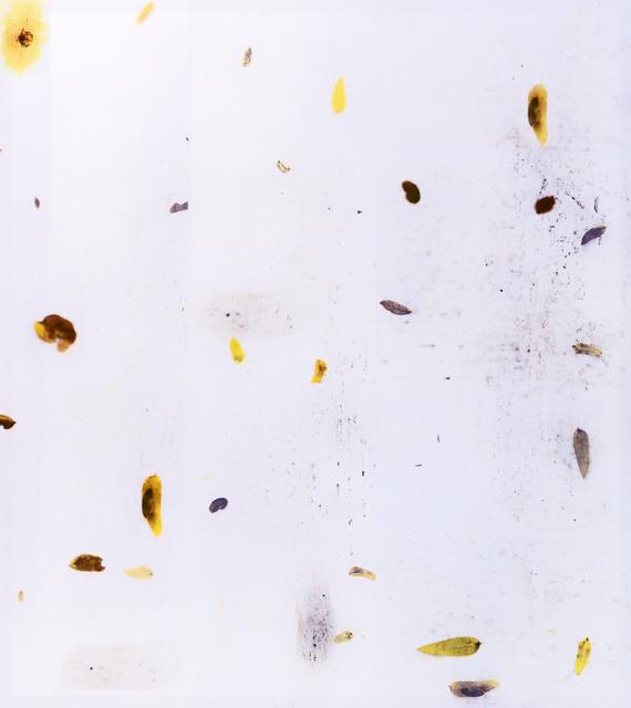 , 'Leaves,' , Silo118