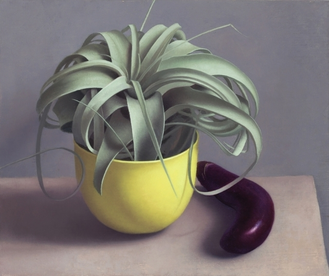 Amy Weiskopf, 'Airplant and Eggplant', 2016, Clark Gallery