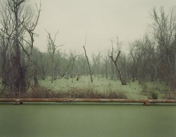 , 'Swamp and Pipeline, Geismar, Louisiana,' 1998, Robert Mann Gallery