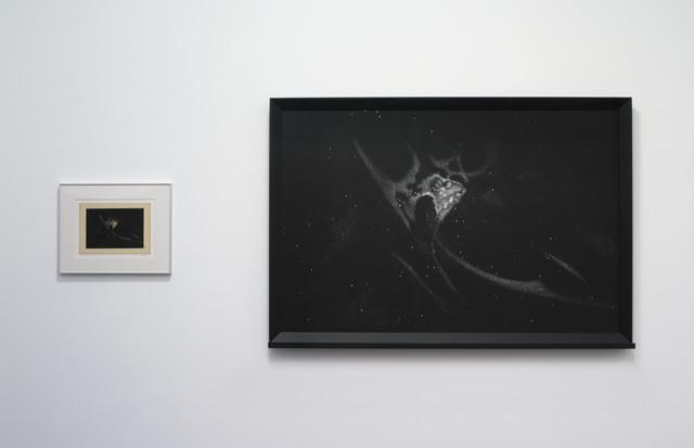 , 'Dust (Orion Nebula),' 2016, Galerie Nathalie Obadia